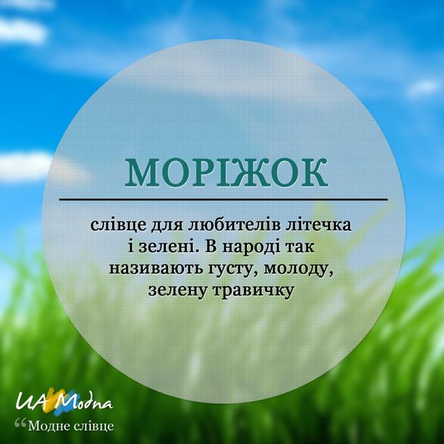 Моріжок