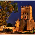 Луцький замок, Волинь