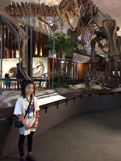 Тайпей, музей з динозаврами