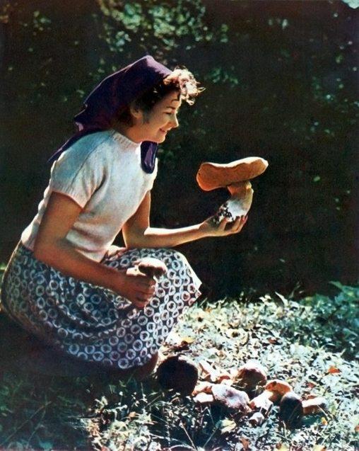 Фотографії Карпат Миколи Козловського. 1966 рік 1/1