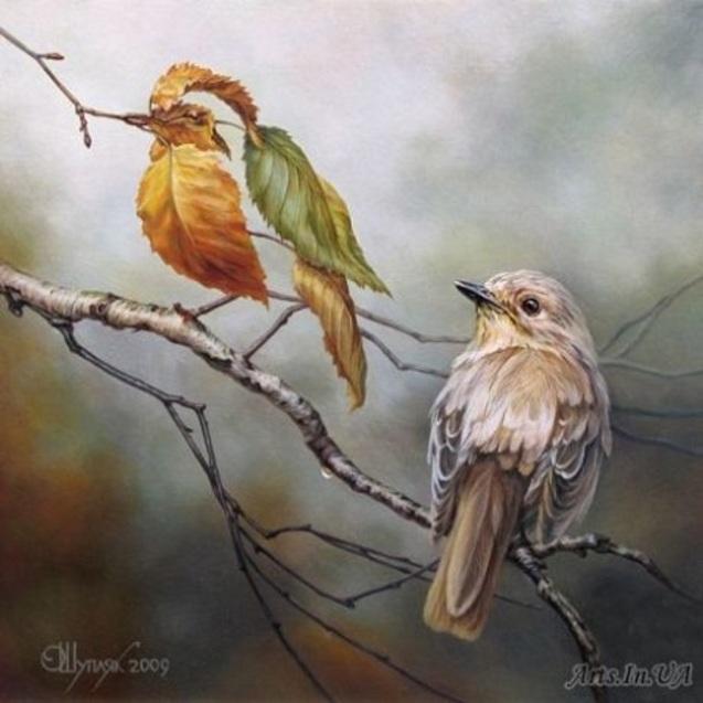 Дві пташки, Олег Шупляк