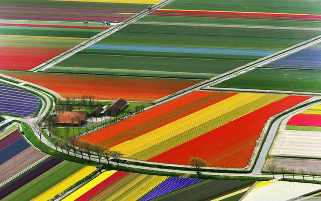 Голандія