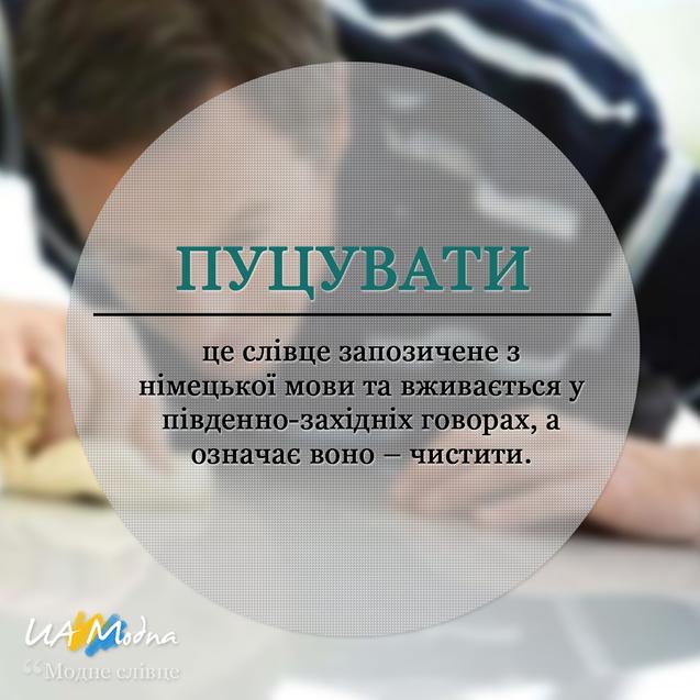 Модне слівце Пуцувати, український сленг, неологізми, жаргонізми