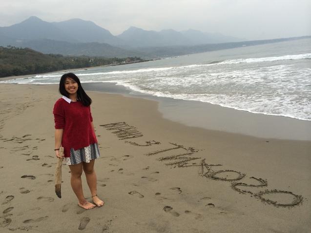 Тайдон, пляжі