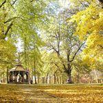 парк Софіївка (фото)