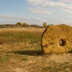 Кам'яна могила, фото
