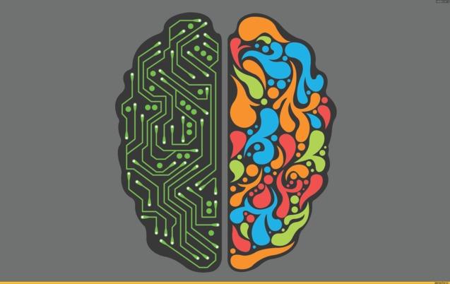 запам'ятовування (мозок)