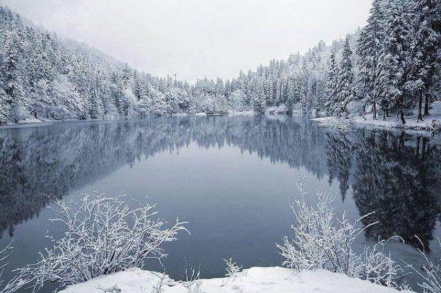 Найкрасивіші зимові пейзажі України (Фото) 1/1