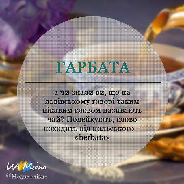 Модне слівце Гарбата, український сленг, неологізми, жаргонізми
