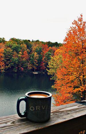 Хочеш, щоб ця осінь стала початком здійснення мрій чи будеш і далі чекати дива?