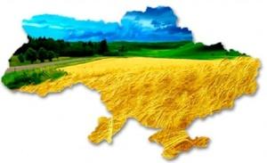Куди піти на 25-й День народження України