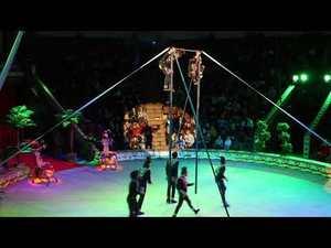 Нова циркова програма «Африка Екзотичний Бум» / New exotic boom circus program in Africa