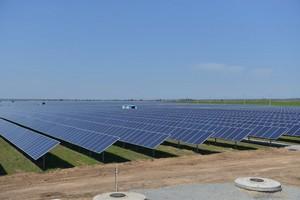 У Запорізькій області почала працювати перша черга найбільшої сонячної електростанції в Україні