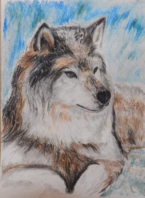 Пастель і вовки...