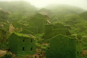 Зелене місто-привид