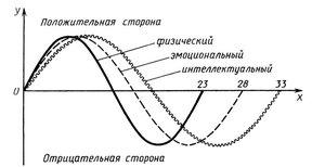 прогррама біоритмів