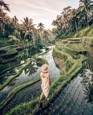 Цікаві факти про неземний острів Балі