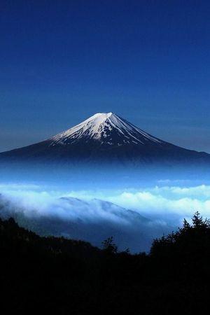 Кіліманджаро: 10 неймовірних фактів