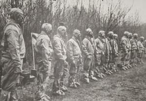 5 цікавих фактів про Чорнобиль