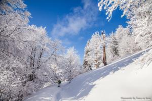 Зимова казка в Карпатах