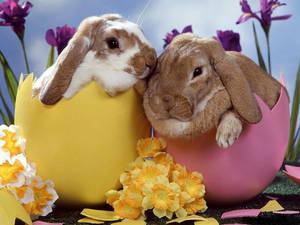 Язичницький Великдень: п'ять цікавих фактів