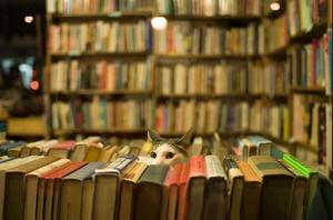 12 книжок для відчайдушних книголюбів