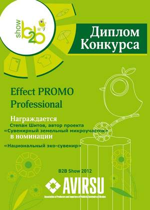 Конкурс Effect PROMO Professional 2012
