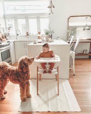 Стільчик для годування: як обрати і на що звернути увагу при покупці
