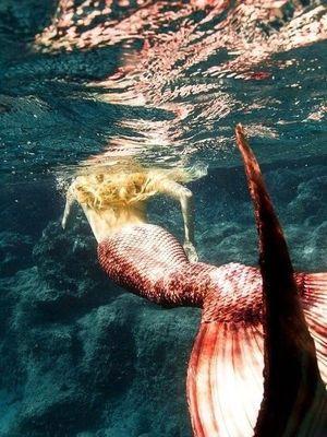 Кури, русалки та мумії, або Історія бачила й не таке
