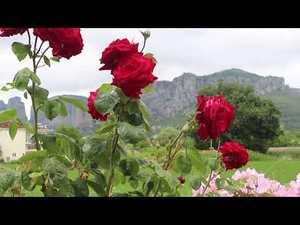 Греція, Халкідікі без прикрас