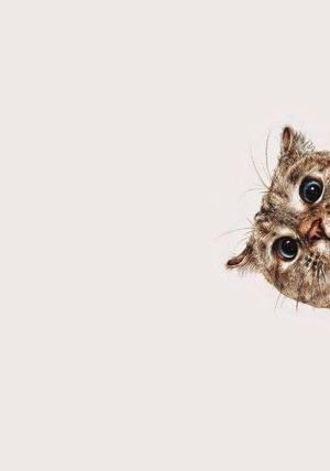 30 фактів про тварин з яких ви будете сміятись