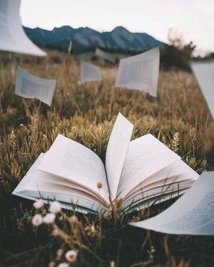 Пісня Нижніх земель та інші історії — 5 книг з незвичним сюжетом