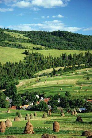 Що відвідати цього літа: топ 15 красивих місць Карпат